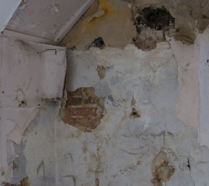 Penetrating-Damp-Solid-Wall