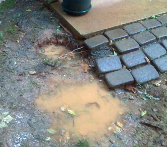 Heavy Rain Saturated Ground Rising Damp
