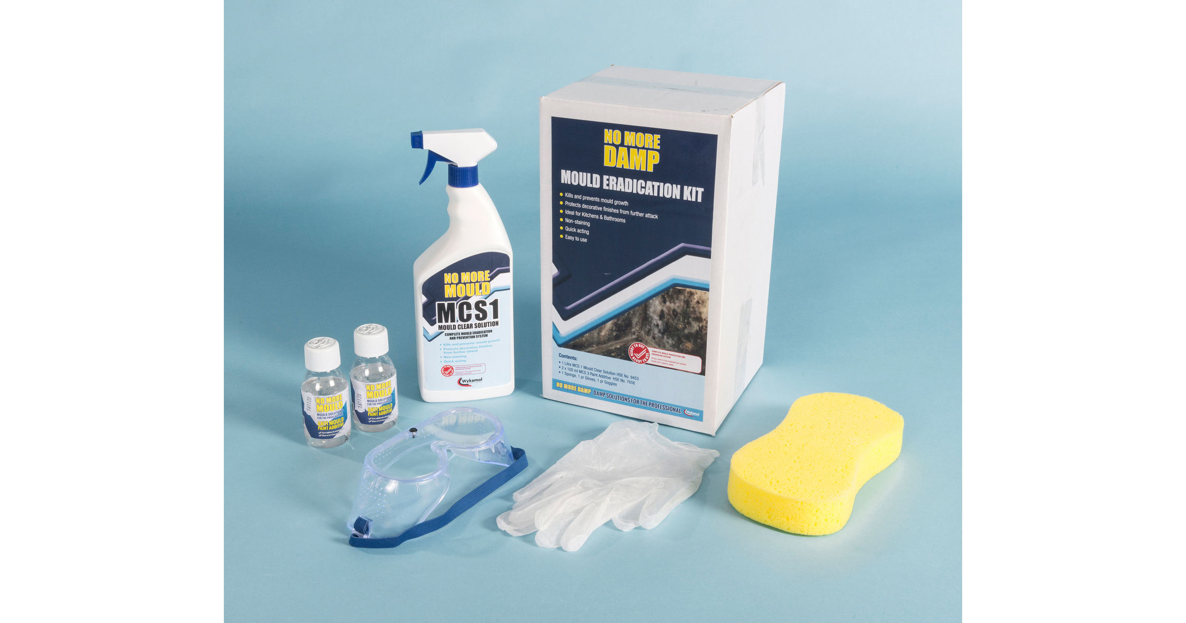 Mould Remover Kit