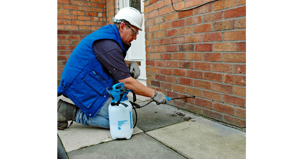 Damp Proofing Cream Damp Proofing Products Twistfix