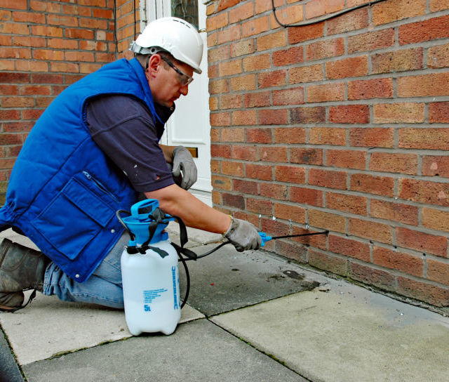 Damp Proofing Cream